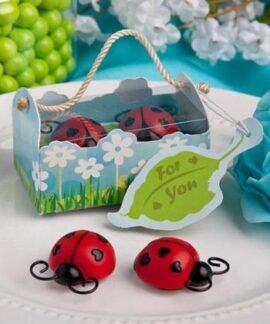 Ladybug Magnet Gift Set