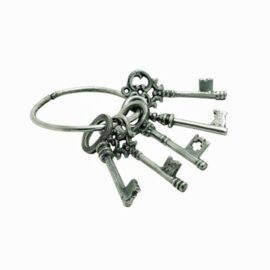 Set Antique Aluminum Keys on Ring