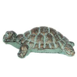W-6711-Turtle-12-19-9607-2