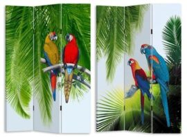 Parrots and Palm Screen