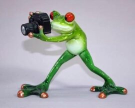 Frog Photographer Figurine