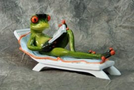 Frog Resting on Lounger