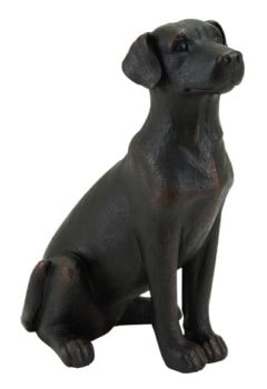 Labrador Retriever Dog Bronze Color