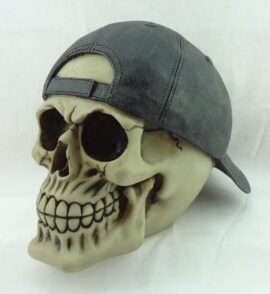 Skull with Backward Cap