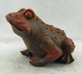 Dark Color Garden Frog