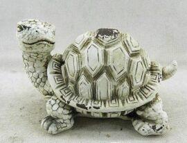 Light Color Garden Turtle