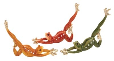 Assorted Stretching Yoga Frog
