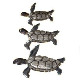Set of 3 Wall Sea Turtles