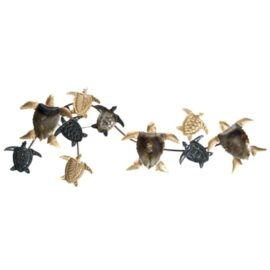 W-3304-Turtles-11-17-3160-2253