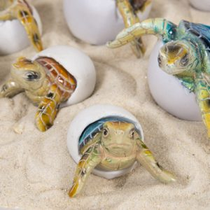 Baby Turtle Eggs