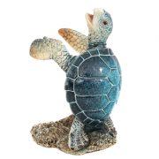Blue Turtle Holder