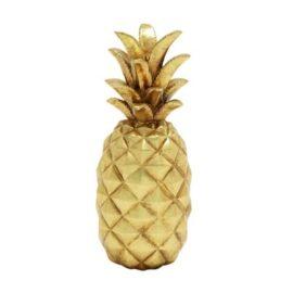 WW-62362F-pineapple