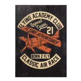 W-8803-Airplane-6-18-6905-4497