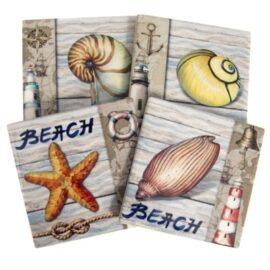 VV-8807-Shell-Coasters-6-18-7930-5192