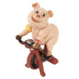 WW-413-Pig-Bike-6-18_8086
