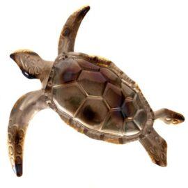 W-3340-Turtle-9-18-7909-2257