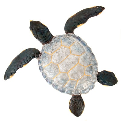 W-3341-Turtle-9-18-7869-2259