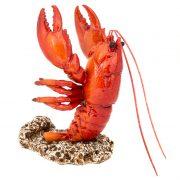 WW-436-Lobster-Bottler-Holder-10-18-0932-2-5254
