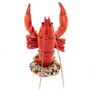 WW-436-Lobster-Bottler-Holder-10-18-0936-2-5256