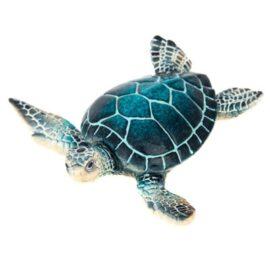 WW-242B-Turtle-10-18-2057-4568