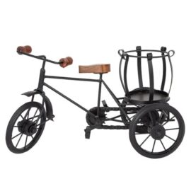 W-1886-Tricycle_1727