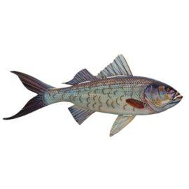W-3395-Blue-Fish4-19-1462-2
