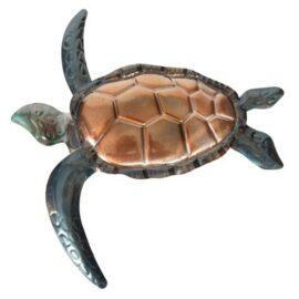 W-3340-Turtle-5-19-9709