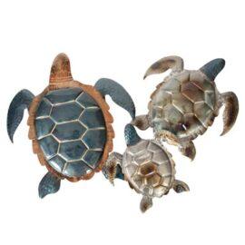 W-3342-Turtle5-19-9711