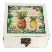 VV-8863-Pineapple-6-19_1102
