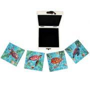 VV-8961-Turtle-Coasters-_8754