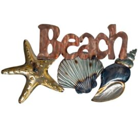 W-3424-BeachShells-1-20-9932