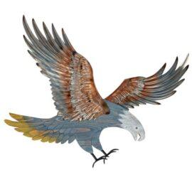 W-3428-Eagle-1-20-9940