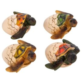 WW-1717-Turtle-Eggs-12-19-9581