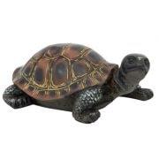 WW-1718-Turtle-12-19-9587