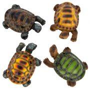 WW-1718-Turtle-12-19-9591
