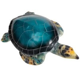 WW-515-Blue_Turtle_3-20-2722