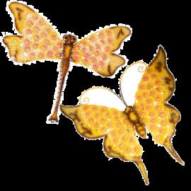 ButterflyDragonfly